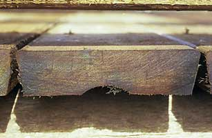 A timber decking plank cross-section.